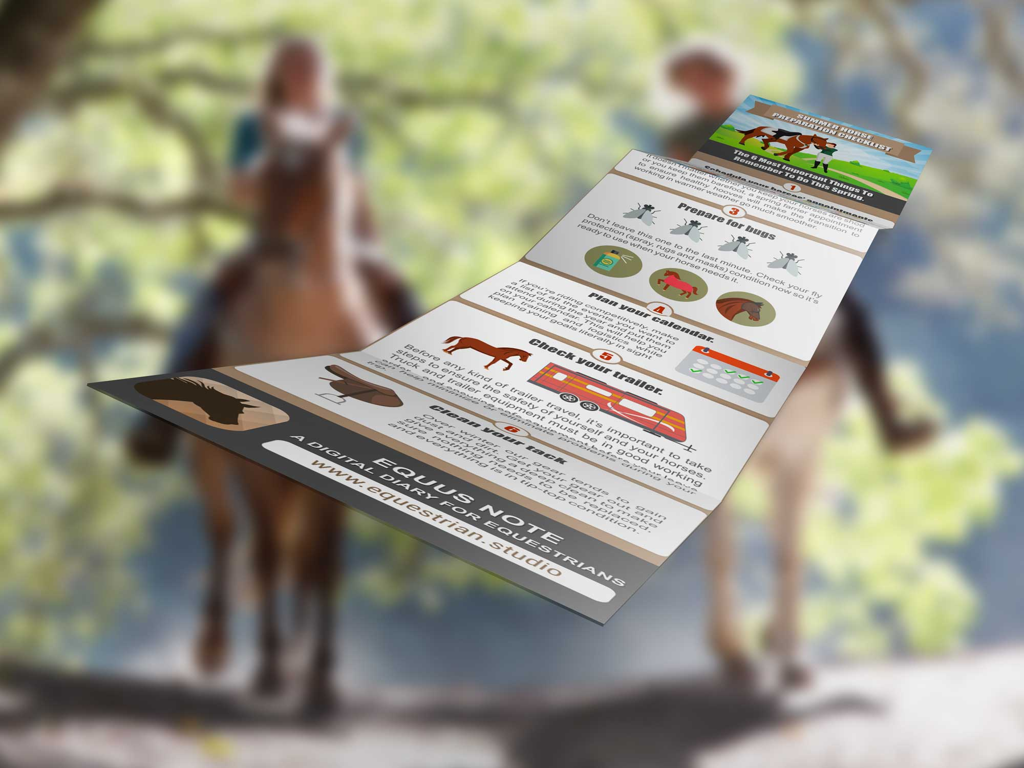 Summer ready your horse with this checklist